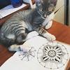 Can I help you draw? #cat #kitten #zentangle #zendala #mandala #wip