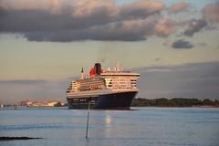 Queen Mary 2 Elbabwärts vor Wedel #queenmary2 #elbe #willkommhöft #wedel #cunard #cunardline