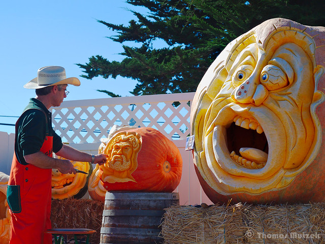 Pumpkin Carving in Half Moon Bay