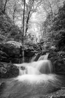Grotto Falls Waterfall (B&W)