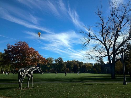 Whitman Sky
