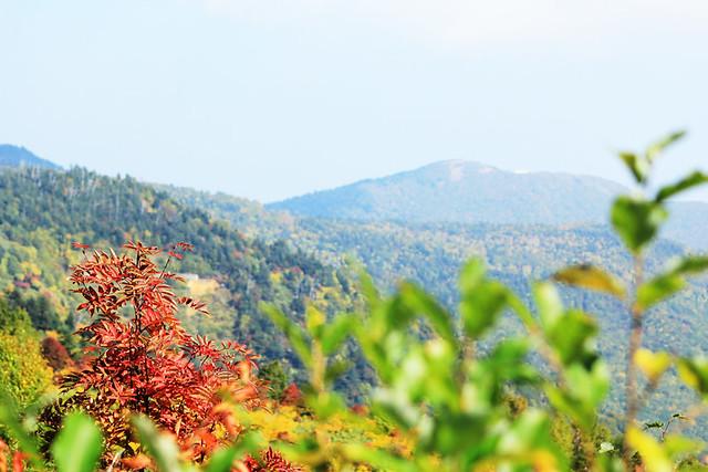 20121014_八幡平_0048