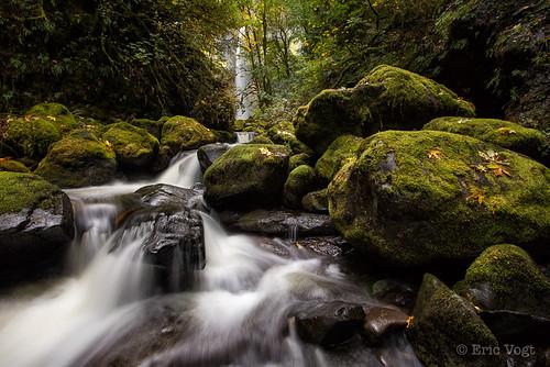 longexposure autumn fall leaves yellow rock oregon waterfall moss places boulders columbiarivergorge elowahfalls johnyeonstatepark