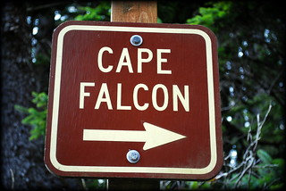 Cape Falcon - Oswald West State Park