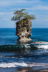 Roca en Manzanillo