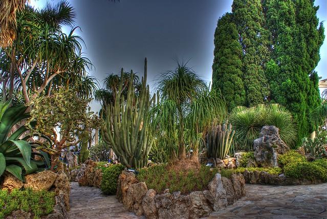 Jardin exotique de monaco flickr photo sharing for Jardin exotique monaco