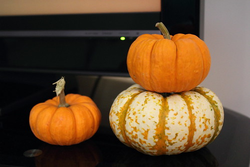 Minipumpkins and tiger pumpkins