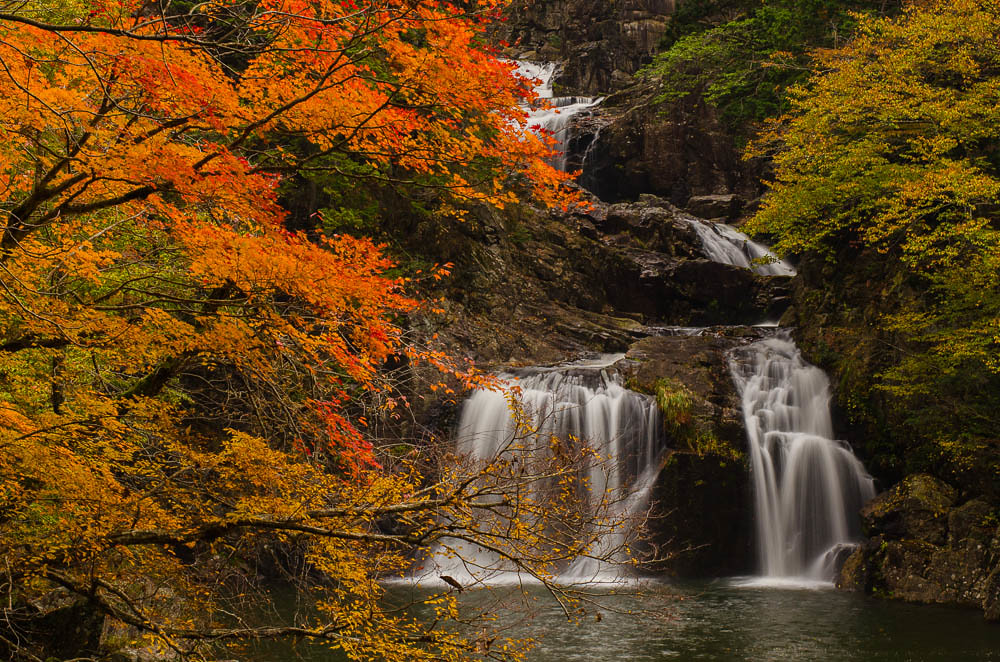 Waterfalls and Colorful leaves#滝と紅葉