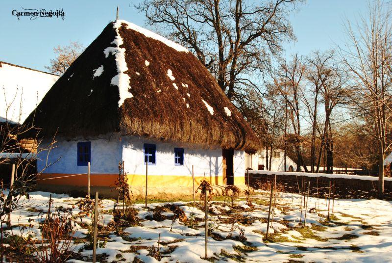 Bucuresti_Muzeul Satului_49