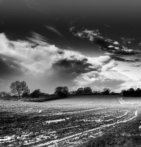 morning winter blackandwhite clouds blackwhite gloucestershire array nikond7000 ericgoncalves