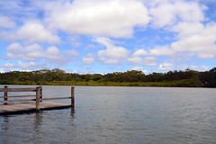 Coffs Creek