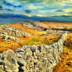 Stone wall from my walk last Saturday. #iphonesia #iphone #iphoneography #instapic #instagram #photo  #wall #countryside #England