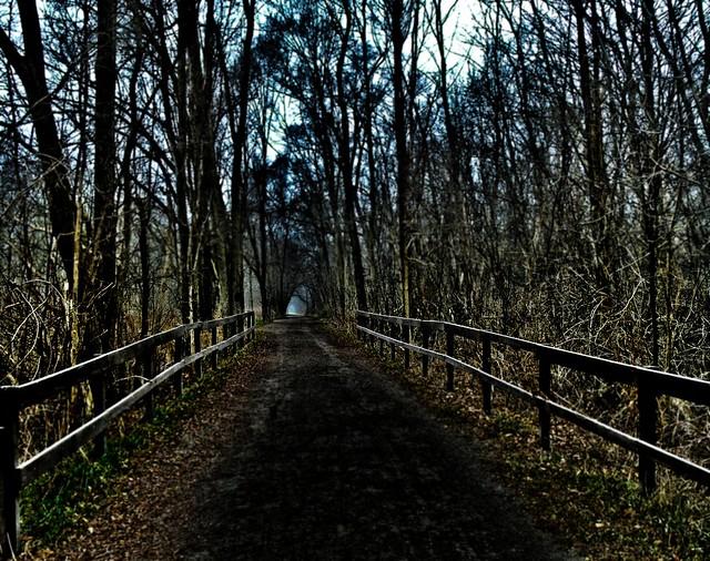 HFF-a dark mood on the Paint Creek Trail