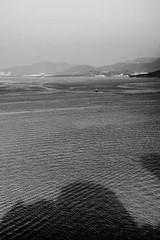 """影形不離"" / 寧 Serenity / SML.20130117.IP3.07133.C23.BW"