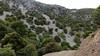 Kreta 2011-1 326