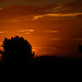 Dark Sunset by Raikyn