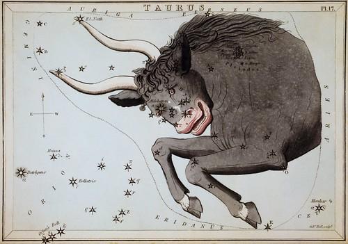 Taurus by sjrankin