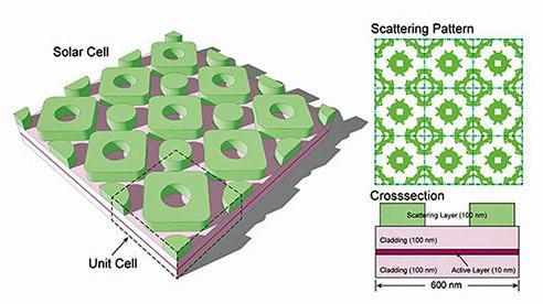 Теория Дарвина поможет повысить КПД солнечных панелей