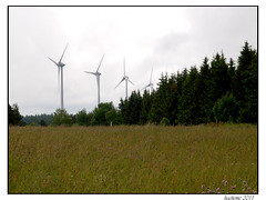 2011-06-11_Eoliennes en Forêt des Barthes