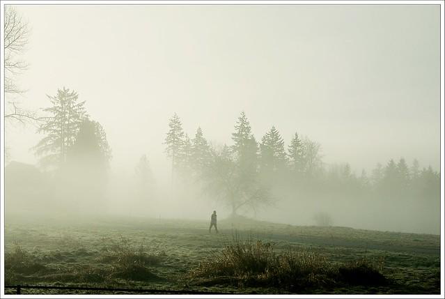 5-52-2013: Misty Morning