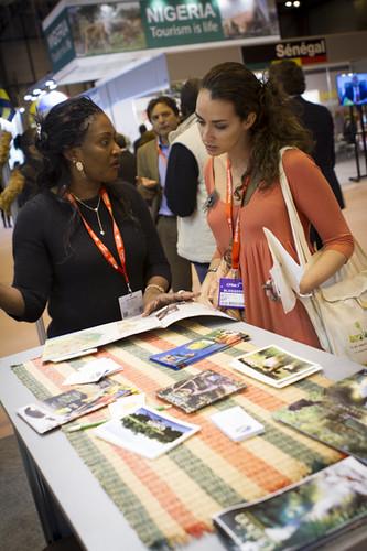 Mucha información en el pabellón africano