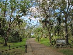 Trail to Mirador Gruta del Arenal (Arenal Shrine)