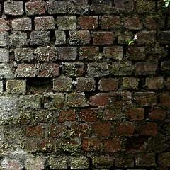 Odd Brickwork
