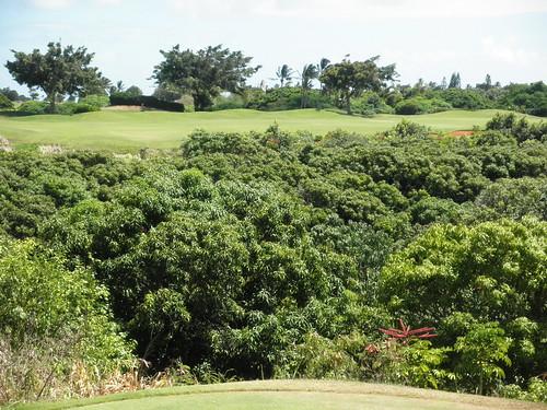 Kauai Lagoon Golf Club 183