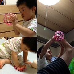 2歳1ヶ月 オーボール (2012/10/12)