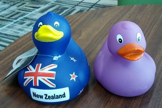 紫小鴨的紐西蘭大哥