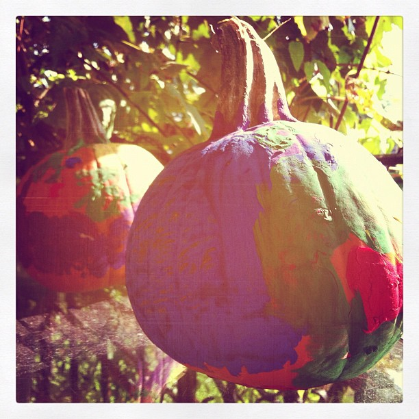 Pumpkin #photoadayagl