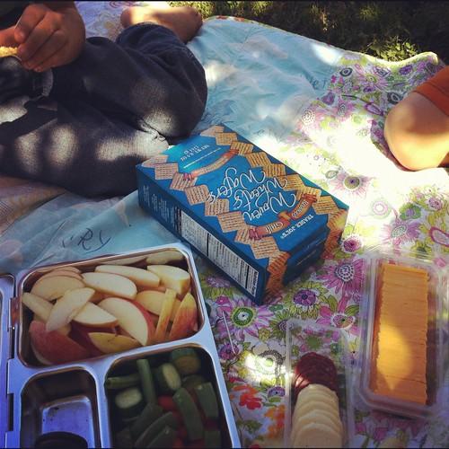 288/366 :: sunday picnic