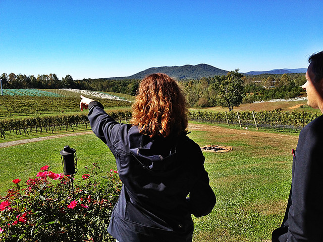 Touring Round Peak Vineyards with owner Kari Heerdt in Mt. Airy.
