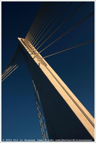 brug montenegro crnagora podgorica milenniumbridge мост cablestayedbridge views200 img1031 черногория tuibrug ©ditissuzanne canoneos40d црнагора подгорица мостмиленијум sigma18250mm13563hsm 22092012