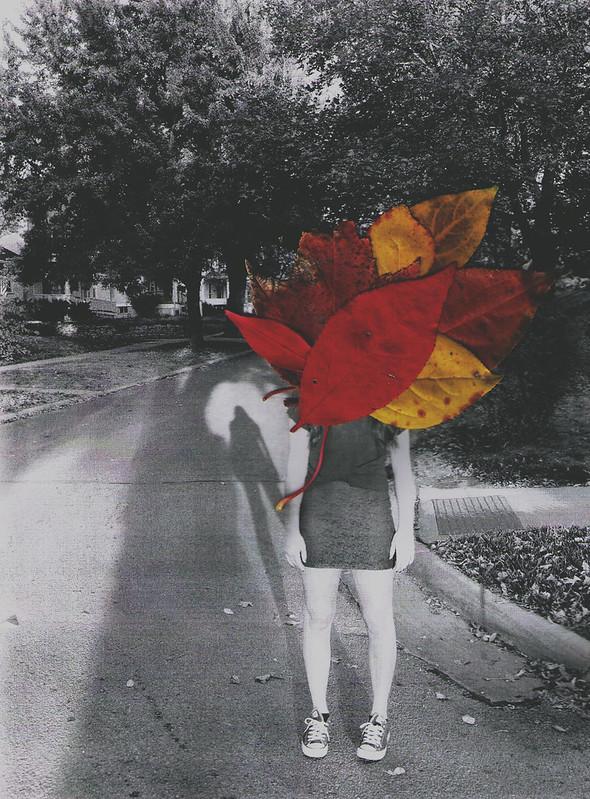 a fall evening
