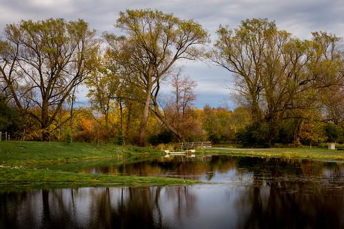 autumn kids pond carletonplace