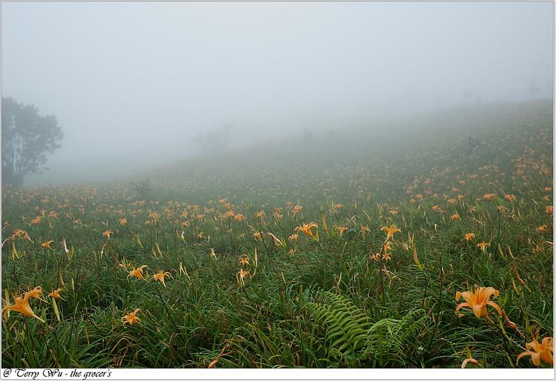雲霧中的六十石山-10