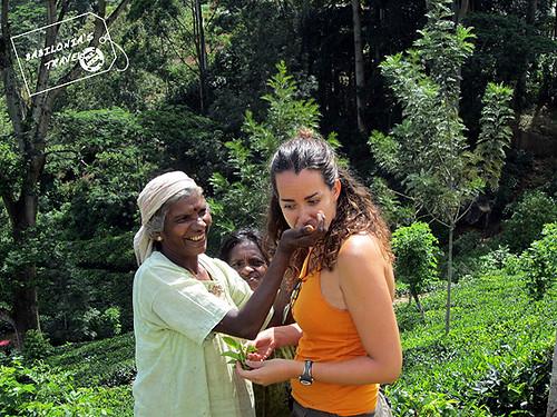 senoras tamiles en Sri Lanka
