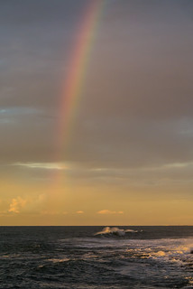 The Rainbow Warrior who challenges the Golden Sunset in a duel. I was there, he will be defeated