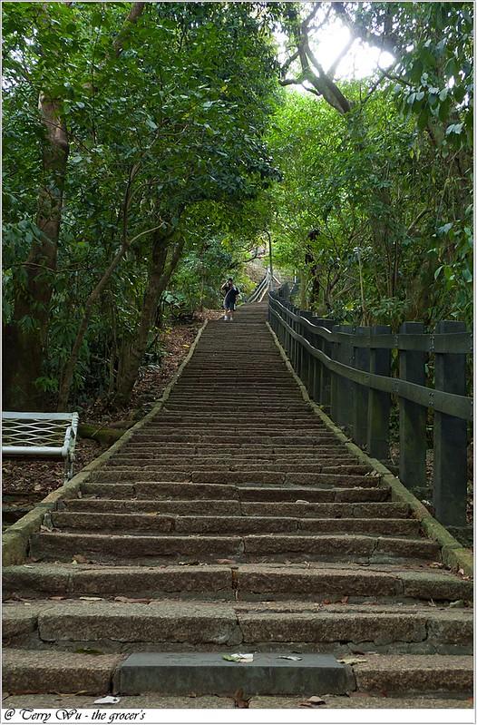 象山芭樂步道-7