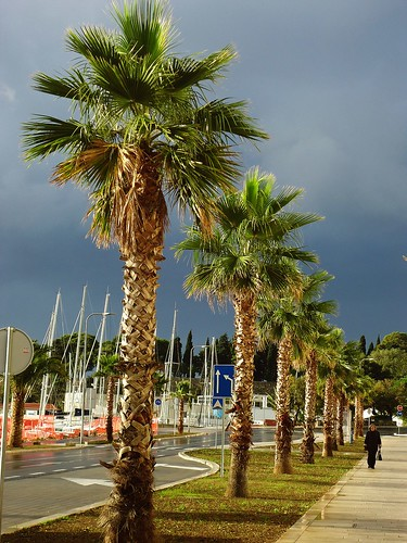 jesen by XVII iz Splita