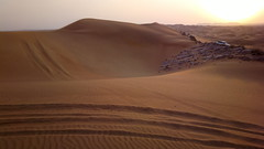 Dunes and tracks