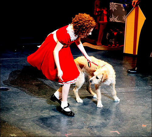 Lilla Crawford and Sunny Opening night of the Broadway musical 'Annie' at the Palace Theatre – Curtain Call. New York City, USA – 08.11.12