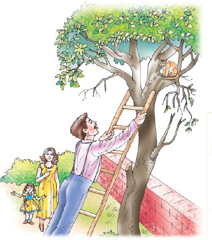 NCERT Class VII English Chapter 7 The Invention of Vita-Wonk