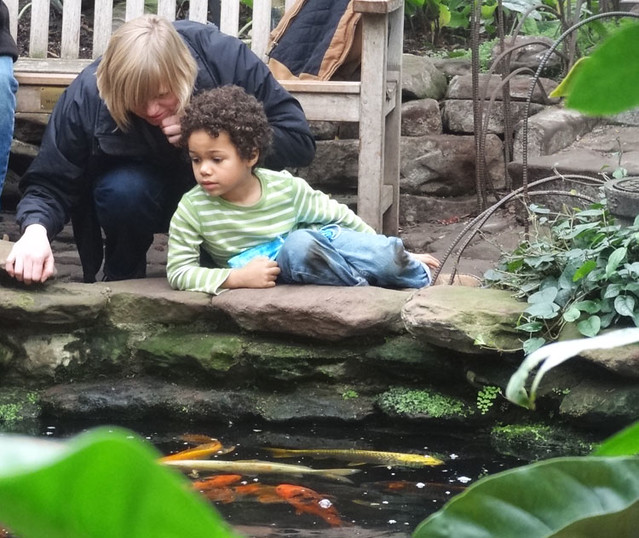 kid-fish-pond