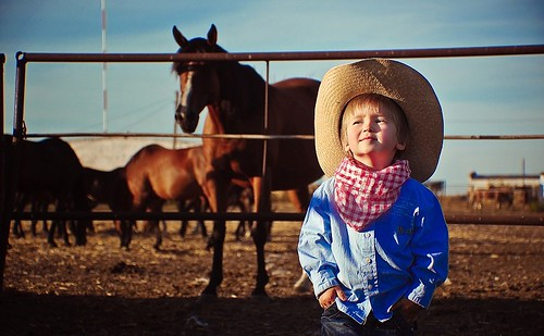 Winner of the Equine Trader Vetpro Photo of the Week