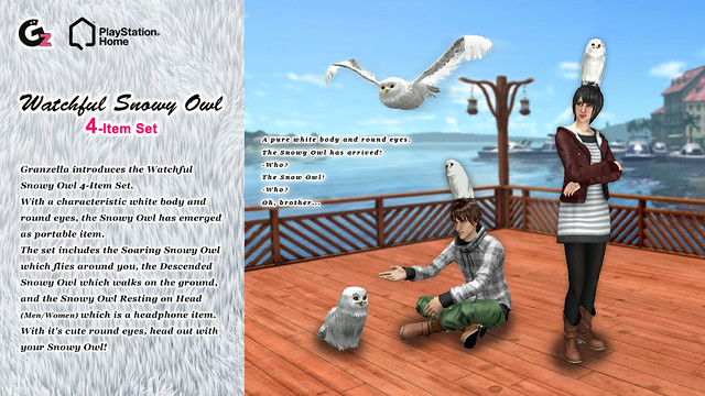 20121212_SCEA_owl_blog