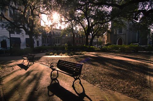park sunset georgia shadows savannah 365