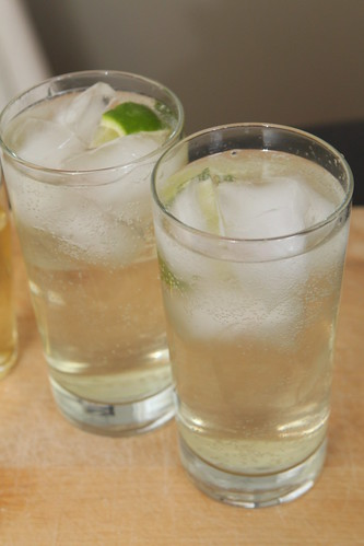 Homemade Gin & Tonic