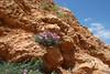 Kreta 2011-1 105